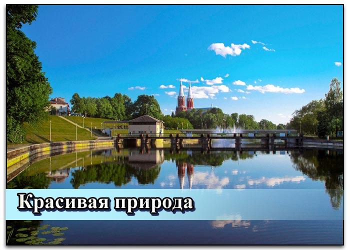 Какая конкретно виза нужна в Литву для россиян в 2019 году