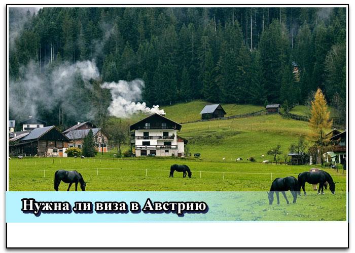 Особенности визы в Австрию для россиян в 2019 году